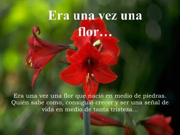 Era una vez una flor que nació en medio de piedras. Quién sabe como, consiguió crecer y ser una señal de vida en medio de ...