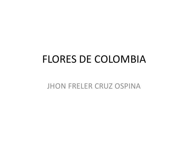 FLORES DE COLOMBIA JHON FRELER CRUZ OSPINA