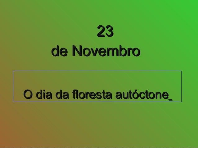 O dia da floresta autóctoneO dia da floresta autóctone 2323 de Novembrode Novembro