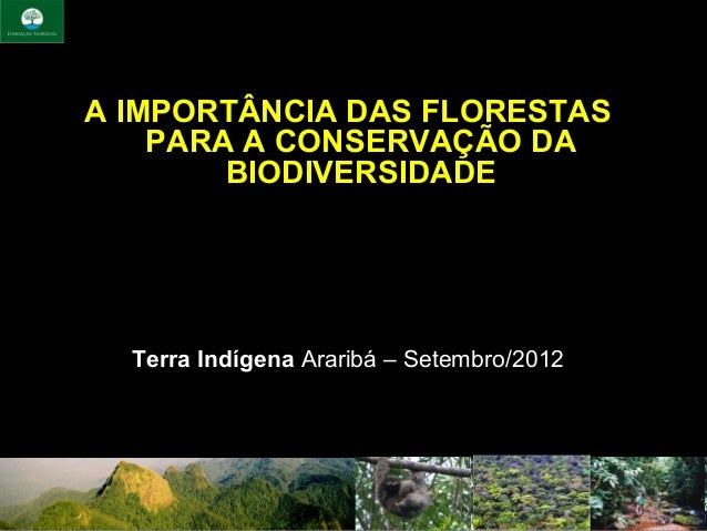 A IMPORTÂNCIA DAS FLORESTAS    PARA A CONSERVAÇÃO DA        BIODIVERSIDADE  Terra IndígenaAraribá–Setembro/2012