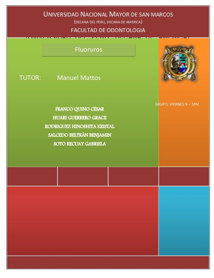 UNIVERSIDAD NACIONAL MAYOR DE SAN MARCOS                             (DECANA DEL PERU, DECANA DE AMERICA) UNIVERSIDAD FACU...