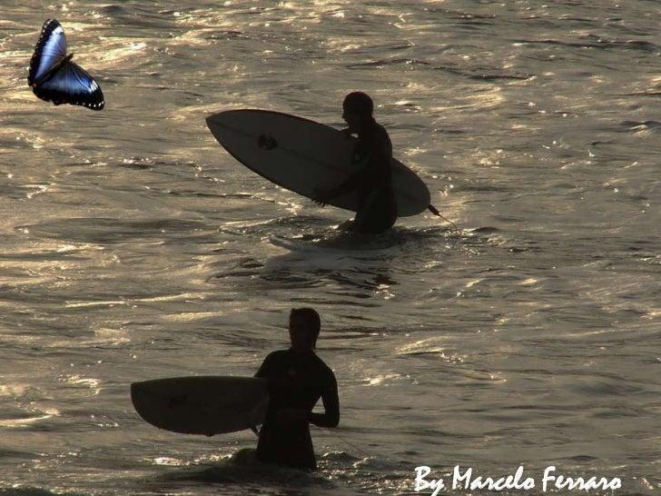 Florianópolis surf