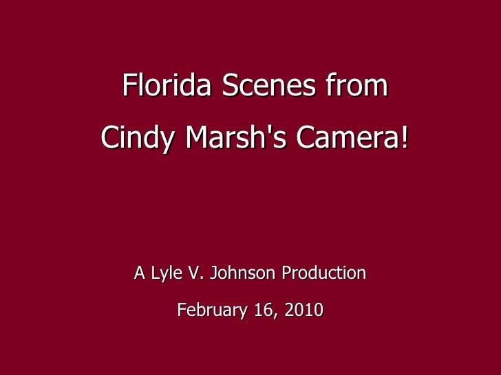 Florida Scenes!