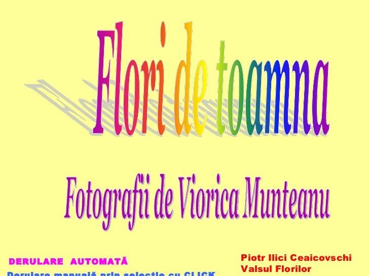 DERULARE  AUTOMATĂ  Derulare manuală prin selecţie cu CLICK Fotografii de Viorica Munteanu Piotr Ilici Ceaicovschi Valsu...