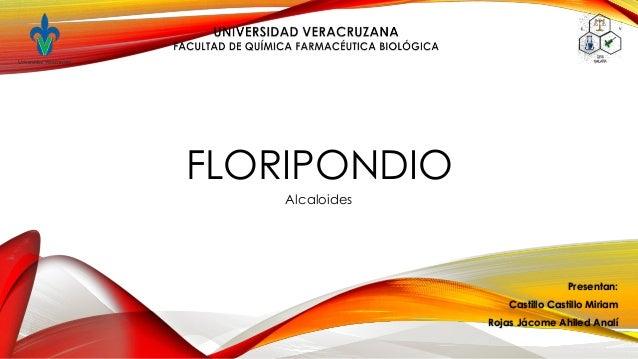FLORIPONDIOAlcaloidesPresentan:Castillo Castillo MiriamRojas Jácome Ahiled Analí