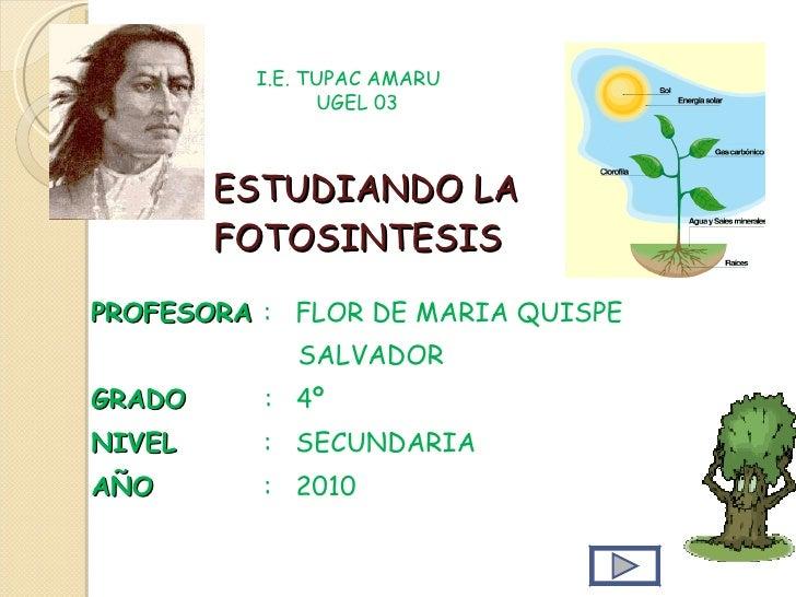 ESTUDIANDO LA FOTOSINTESIS PROFESORA  :  FLOR DE MARIA QUISPE  SALVADOR GRADO  :  4º NIVEL   :  SECUNDARIA AÑO  :  2010 I....