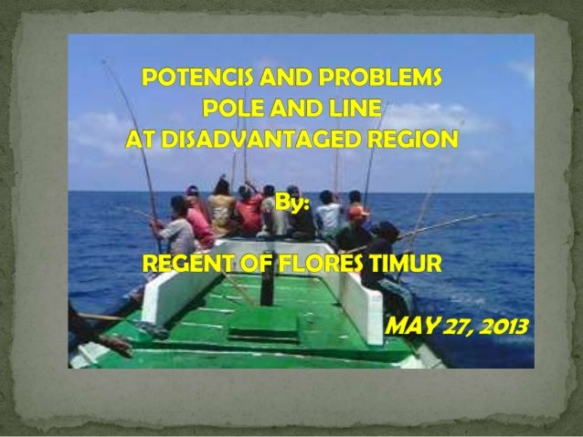 A. OVERVIEW OF FLORES TIMUR REGENCY East Flores Regency is a archipelago regency, consisting of 3major islands namely: So...