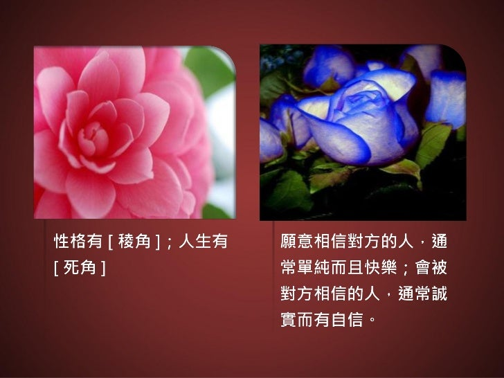 Flower class 04