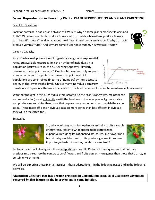 Second Form Science; Domb; 10/12/2012                      Name: _________________________________Sexual Reproduction in F...