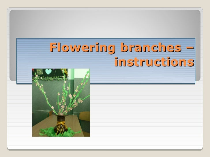 Flowering branches –         instructions