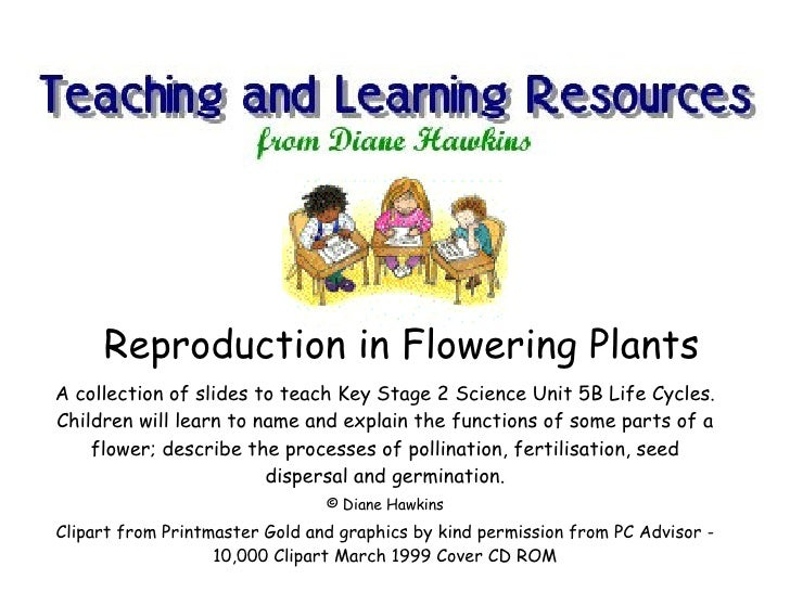 Reproduction in Flowering Plants A collection of slides to teach Key Stage 2 Science Unit 5B Life Cycles. Children will le...