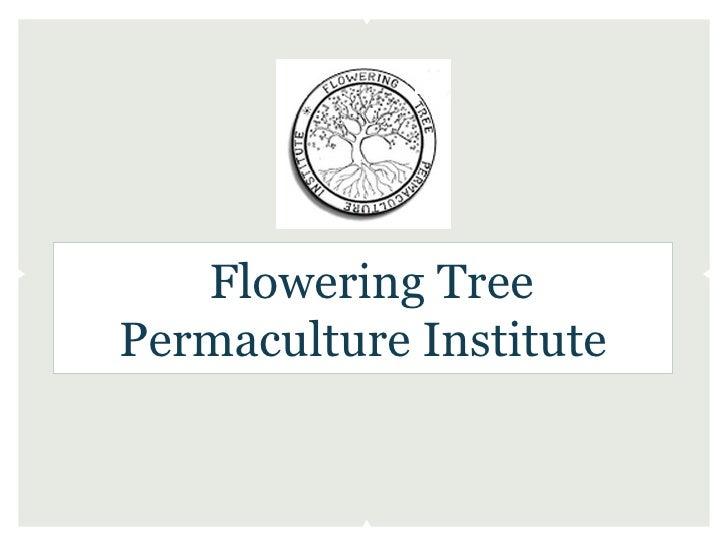 Flowering TreePermaculture Institute