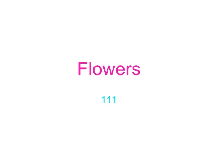 Flowers 111