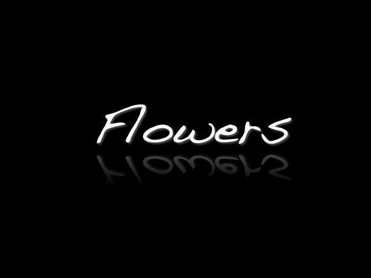 Luigi Bisignani\'s Flowers