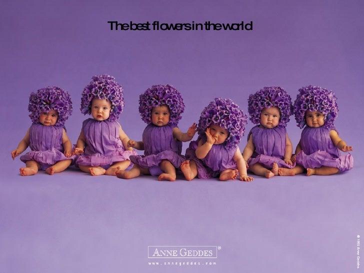 Flowers Babies
