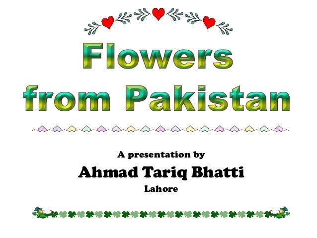 A presentation byAhmad Tariq Bhatti         Lahore