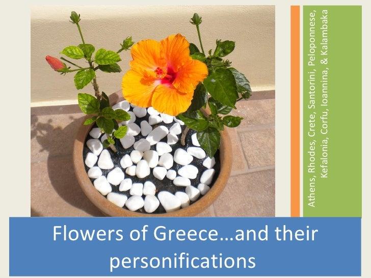 <ul><li>Flowers of Greece…and their personifications  </li></ul><ul><li>Athens, Rhodes, Crete, Santorini, Peloponnese, Kef...