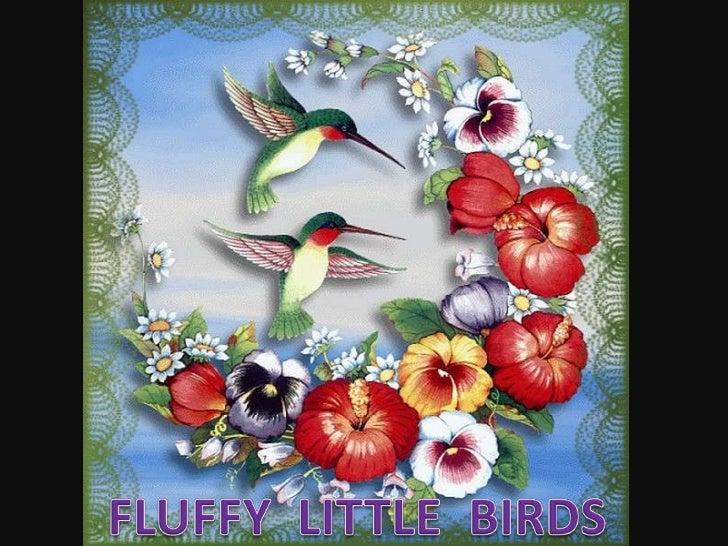 על ידי הרמינה<br />FLUFFY  LITTLE  BIRDS <br />