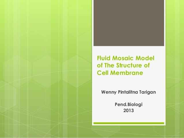 Fluid Mosaic Model of The Structure of Cell Membrane Wenny Pintalitna Tarigan Pend.Biologi 2013