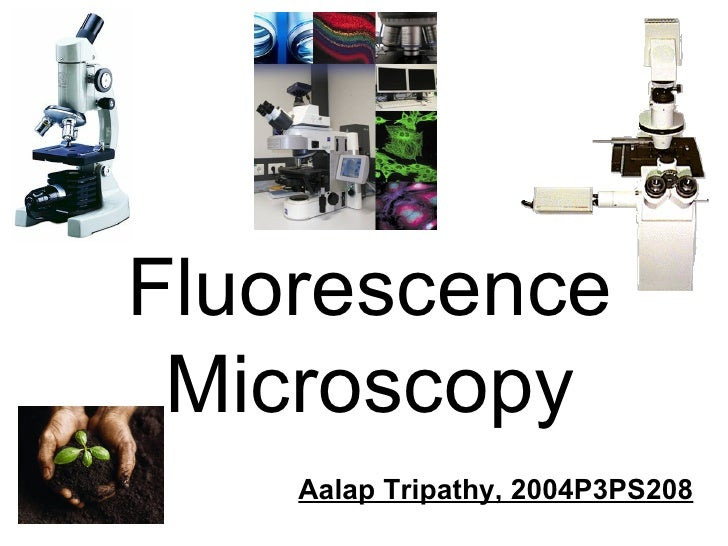 Fluorescence Microscopy Aalap Tripathy, 2004P3PS208