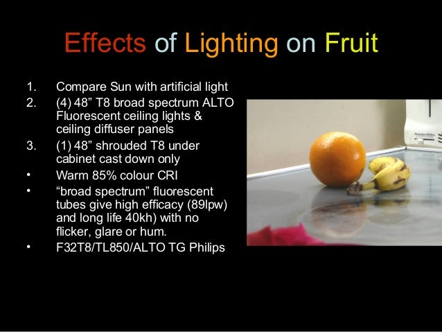 """Anthony Stewart 23 Feb, 2011 Effects of Lighting on Fruit 1. Compare Sun with artificial light 2. (4) 48"""" T8 broad spectru..."""