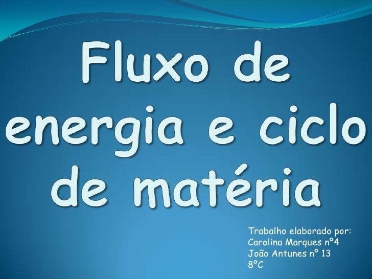 Fluxo de energia e ciclo de matéria<br />Trabalho elaborado por:<br />Carolina Marques nº4<br />João Antunes nº 13<br />8º...