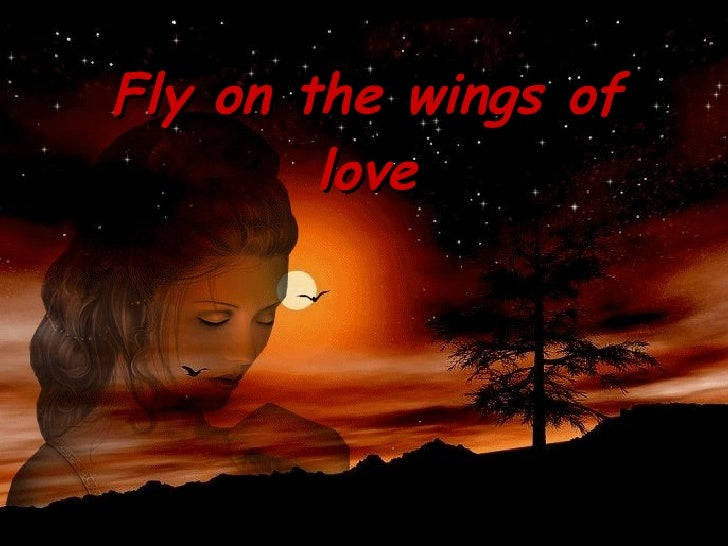 Fly on the wings of love