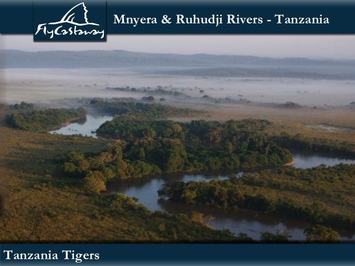 Mnyera & Ruhudji Rivers - TanzaniaTanzania Tigers
