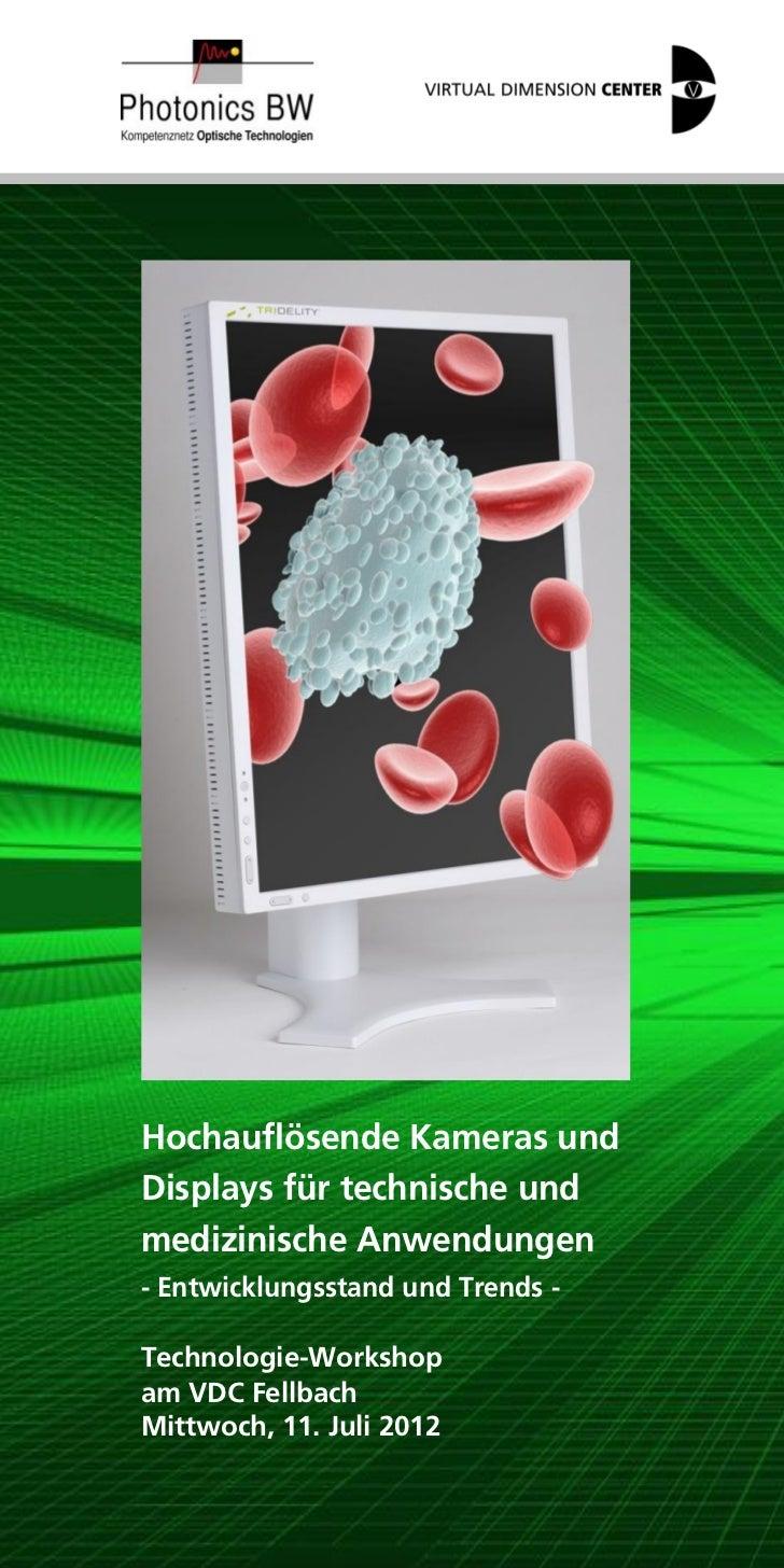 Hochauflösende Kameras undDisplays für technische undmedizinische Anwendungen- Entwicklungsstand und Trends -Technologie-W...