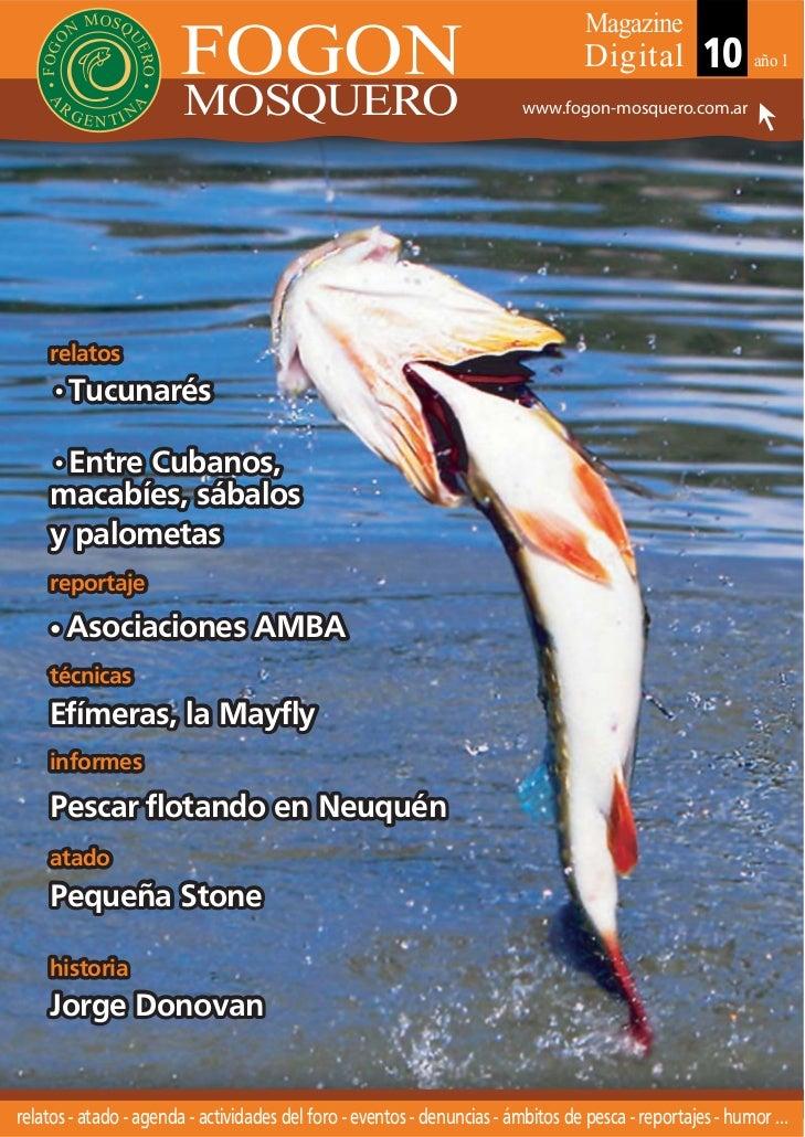 Fly magazine mosquero nº 10