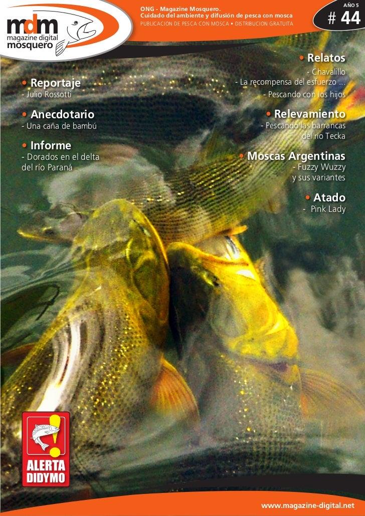 AÑO 5                        ONG - Magazine Mosquero.                        Cuidado del ambiente y difusión de pesca con ...