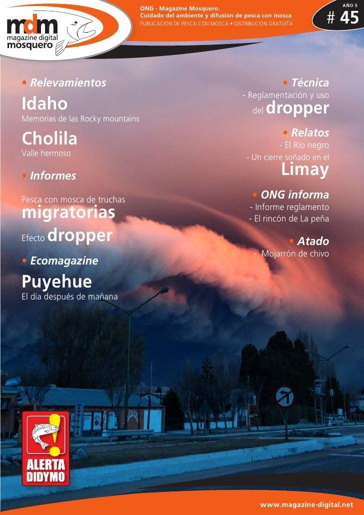 Fly magazine mosquero nº 45