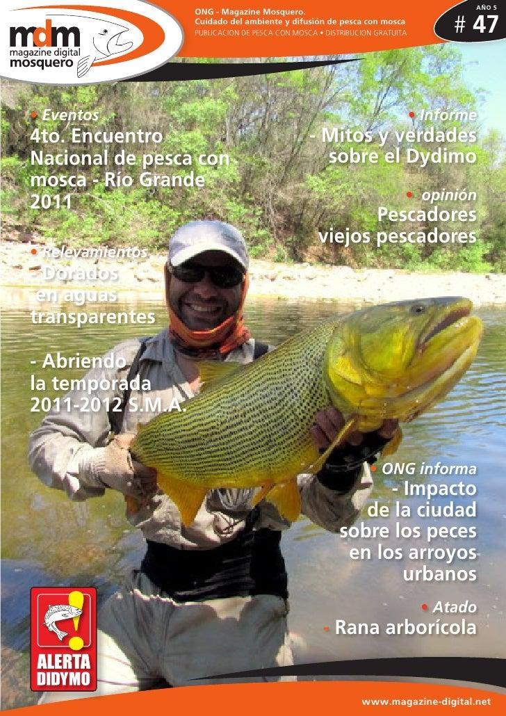 Fly magazine mosquero nº 47