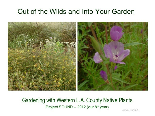 Out of the Wilds and Into Your Garden Gardening with Western L.A. County Native Plants           Project SOUND – 2012 (our...
