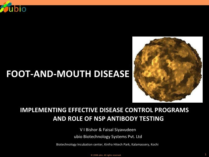 <ul><li>FOOT-AND-MOUTH DISEASE </li></ul><ul><li>IMPLEMENTING EFFECTIVE DISEASE CONTROL PROGRAMS AND ROLE OF NSP ANTIBODY ...