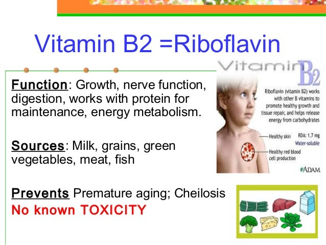 essay for vitamins Vitamin b b vitamins are important to your brain health vitamins b-12 and b-6 are particularly significant they help produce and control the chemicals that influence mood and other brain functions.