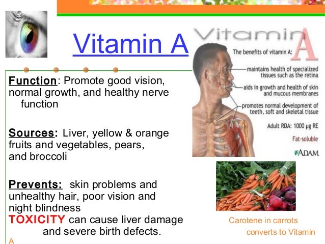 Are Human Vitamins Good For Dogs