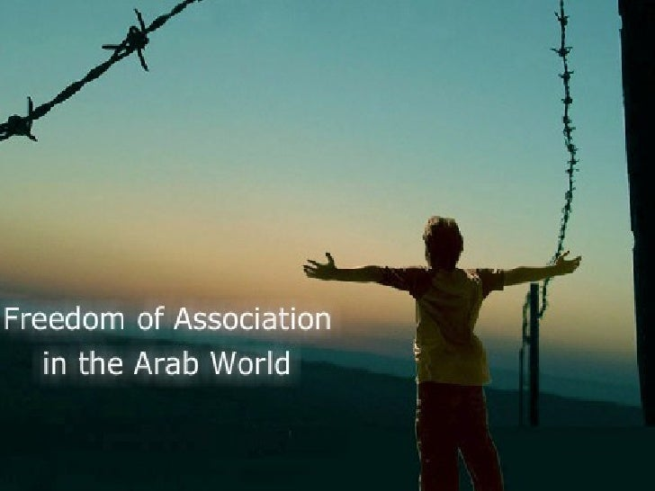 Freedom of Association in the Arab World - The Project and Its Results