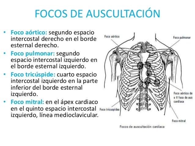 Focos card acos for Cuarto espacio intercostal