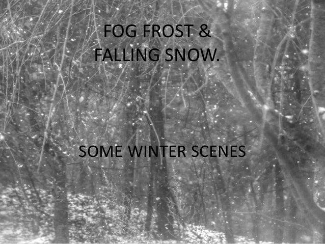FOG FROST & FALLING SNOW.SOME WINTER SCENES