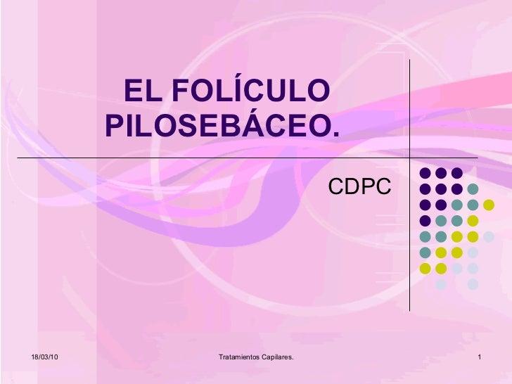 EL FOLÍCULO PILOSEBÁCEO.  CDPC 18/03/10 Tratamientos Capilares.