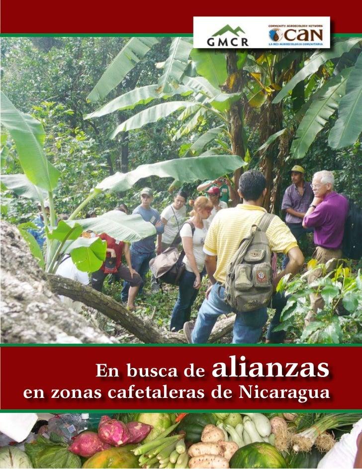 En busca de  alianzasen zonas cafetaleras de Nicaragua