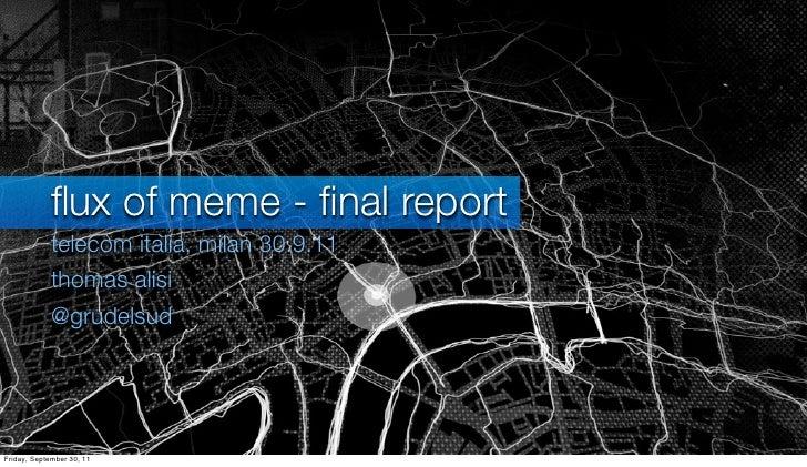 Flux of MEME - final report