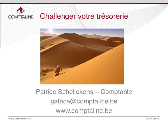 Challenger votre trésorerie  Patrice Schellekens – Comptable patrice@comptaline.be www.comptaline.be Patrice Schellekens ©...