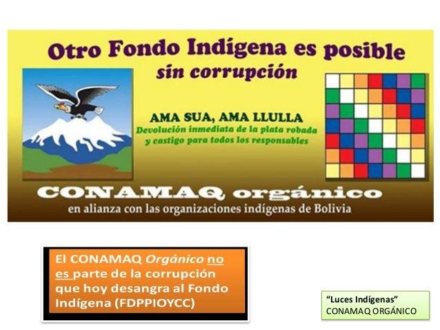 """""""Luces Indígenas"""" CONAMAQ ORGÁNICO"""
