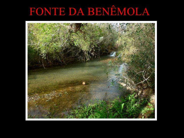 <ul>FONTE DA BENÊMOLA </ul>