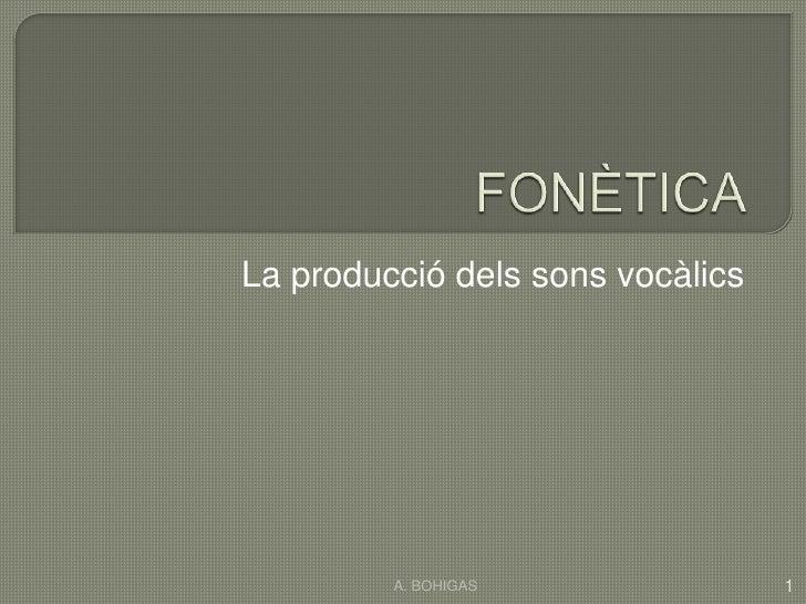 FONÈTICA<br />La producciódelssonsvocàlics<br />1<br />A. BOHIGAS<br />
