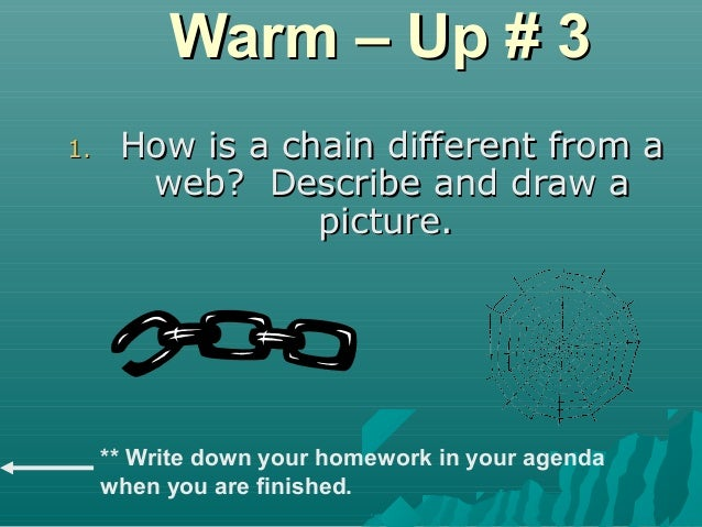 Warm – Up # 3Warm – Up # 3 1.1. How is a chain different from aHow is a chain different from a web? Describe and draw aweb...