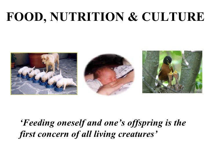Food , Nutrition and Culture