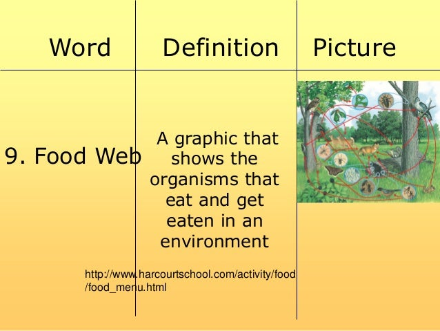 Food chain and web power point for Cuisine meaning